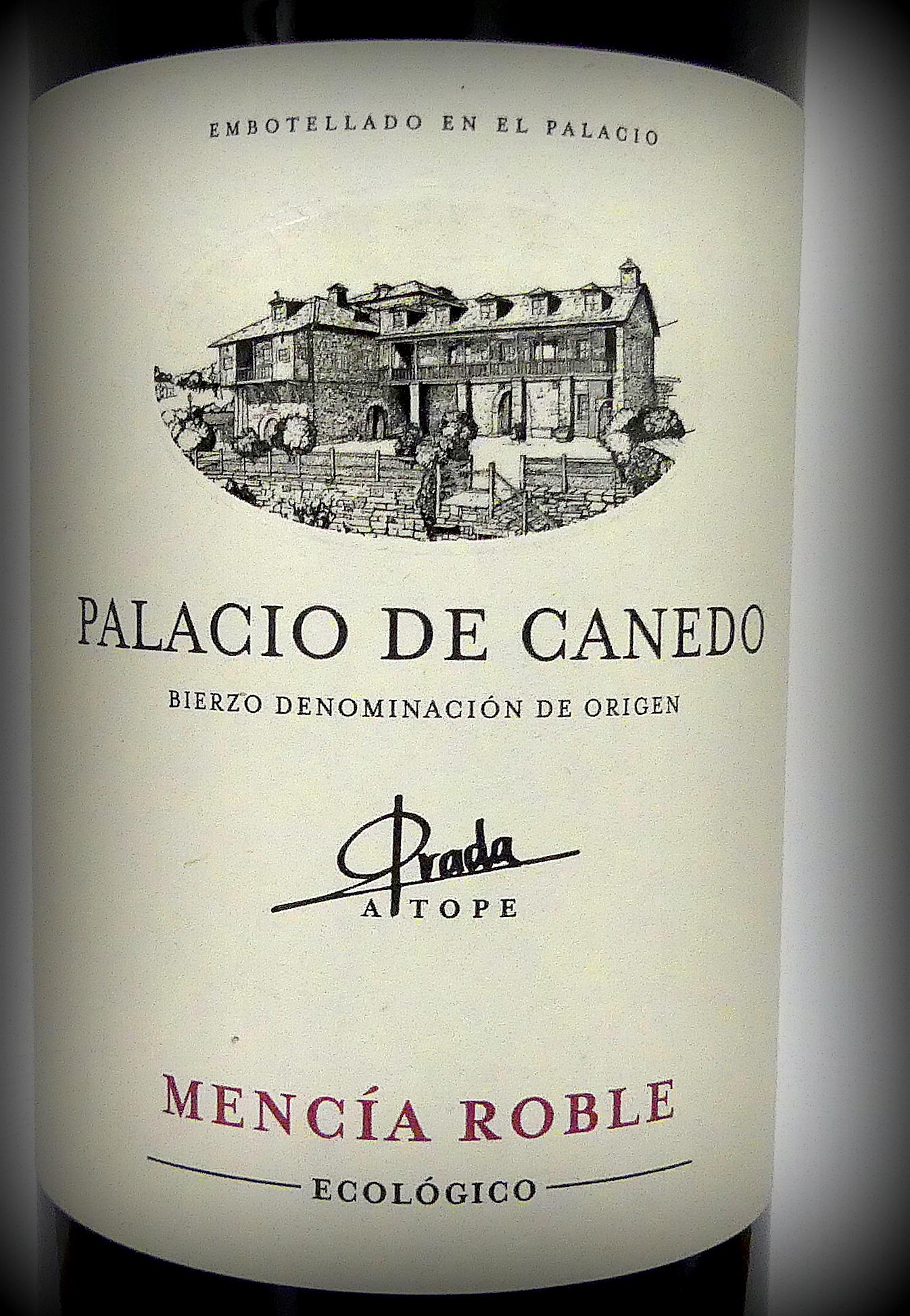 Palacio de Canedo Roble